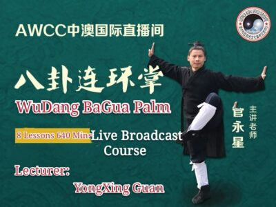 Wu dang  Bagua  Palm <br> 8 lessons: 640mins<br>Elite  level
